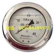 YTN-100ZT轴向带边抗震压力表