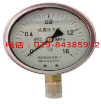 YTN-100耐震压力表