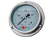 YTN-100ZT轴向耐震带前边压力表