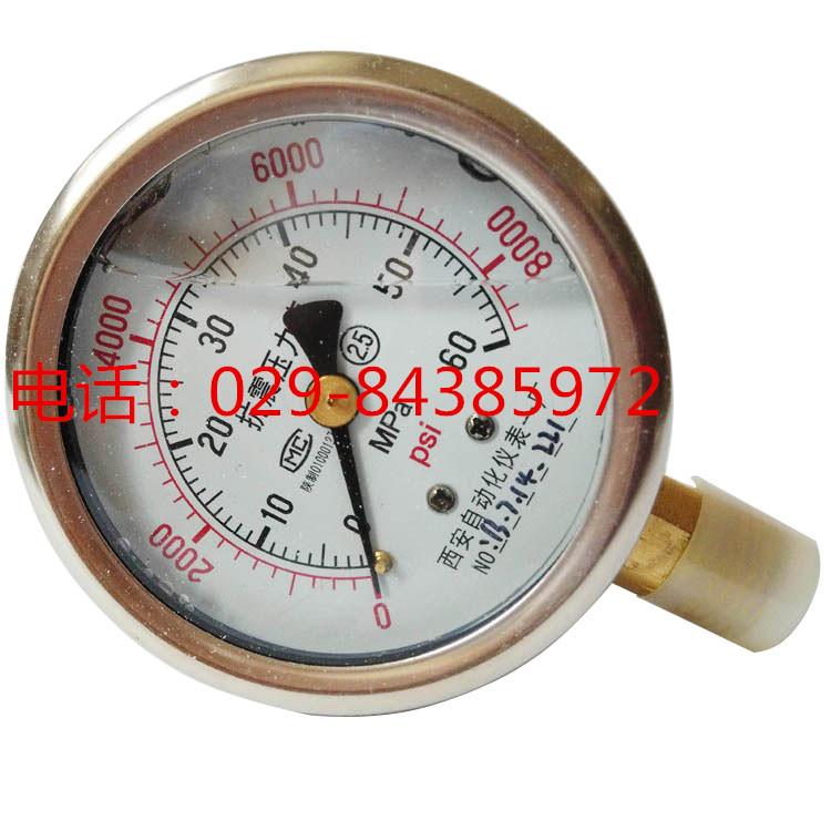YTN-60耐震压力表