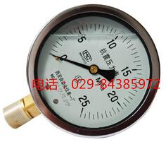YTN-100抗震压力表