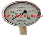 耐震压力表YTN-40