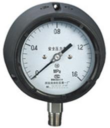 YQSN-150酚醛壳安全压力表